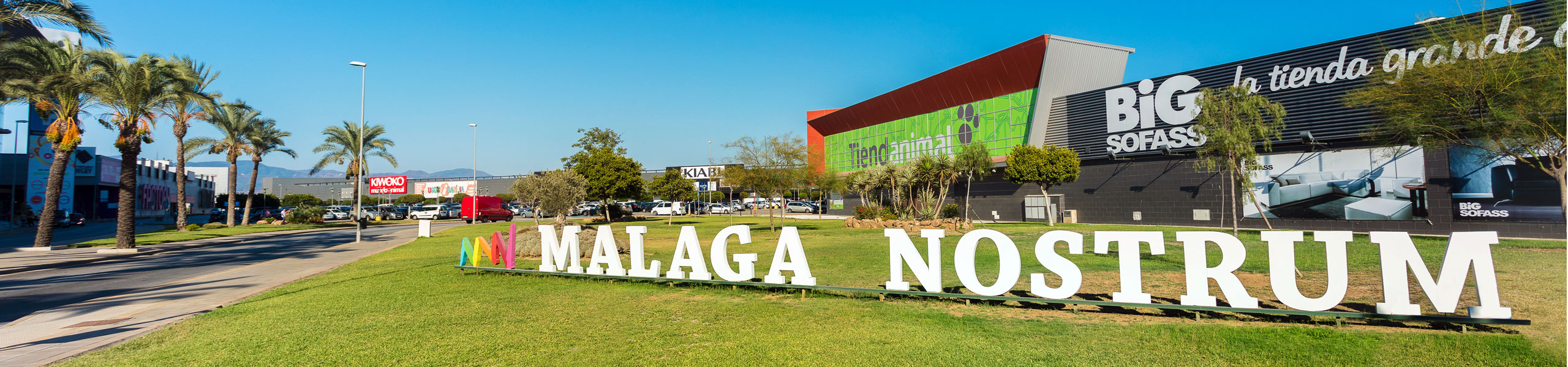 Logo Málaga Nostrum