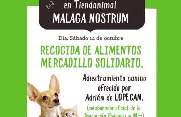 Recogida de pienso en Málaga Nostrum